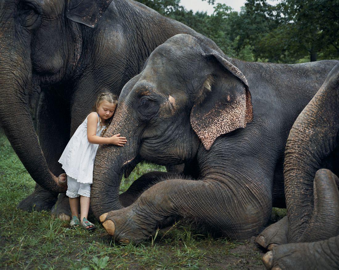 robin-schwartz-amelia-the-animals-05