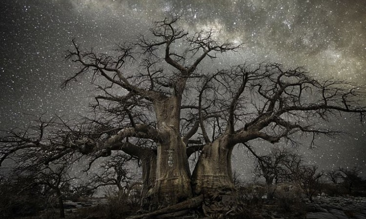 Beth Moon: Diamond Nights