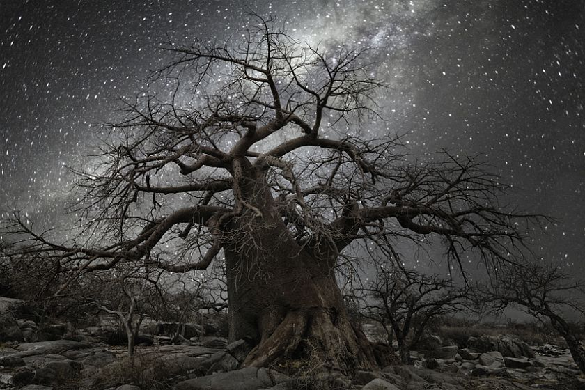 beth-moon-diamond-nights-07