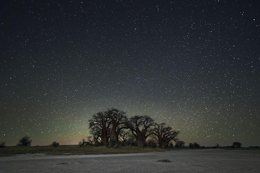 beth-moon-diamond-nights-12