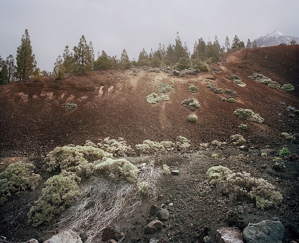 From the series In the Orbit of El Teide