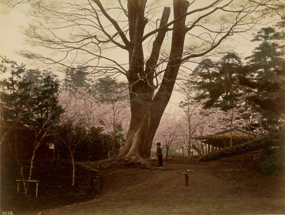 19th-century-color-photos-from-japan-03