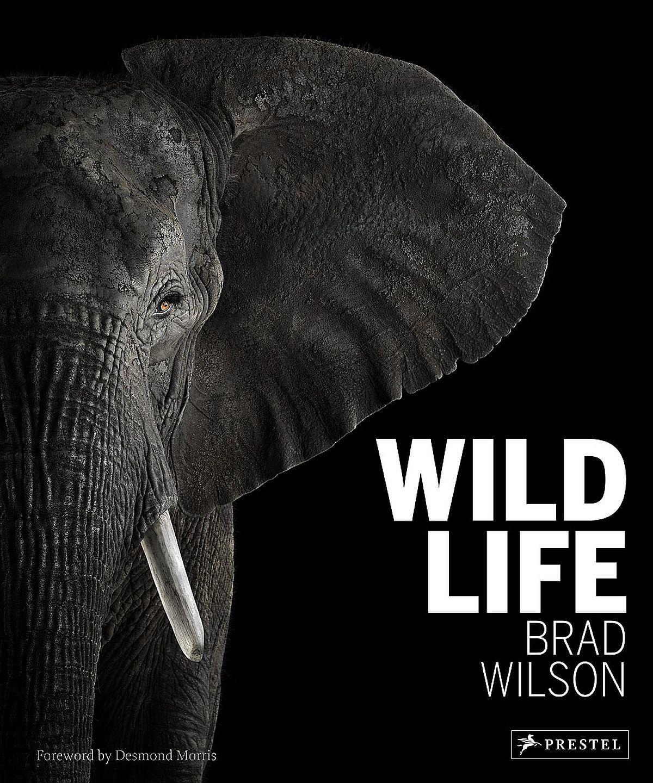 brad-wilson-wild-life-00-cover