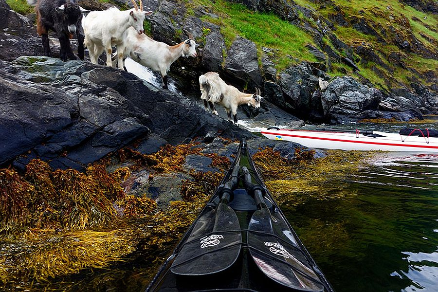 tomasz-furmanek-the-fjords-of-norway-from-the-kayak-seat-20