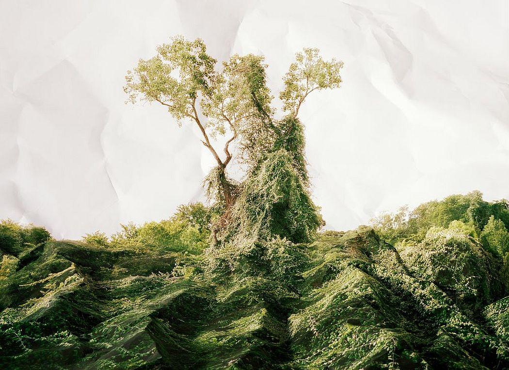 laura-plageman-coneptual-landscapes-06