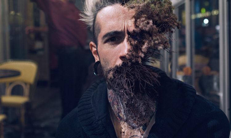 Cal Redback: Treebeard