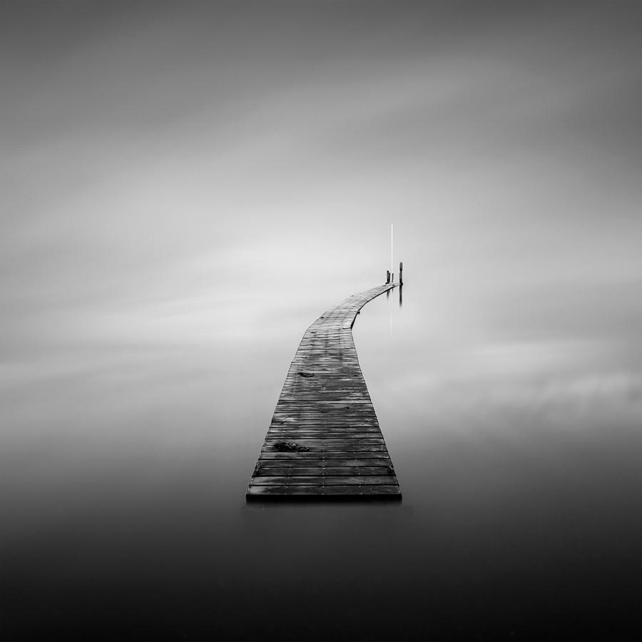 Run Away by David Hixon