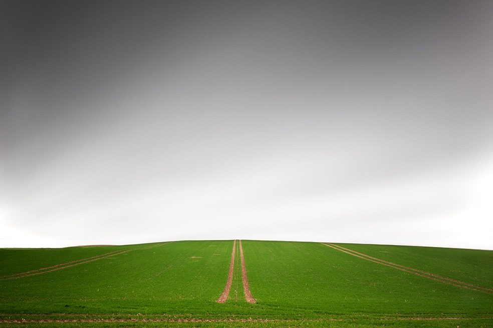 Fields © Bernd Walz