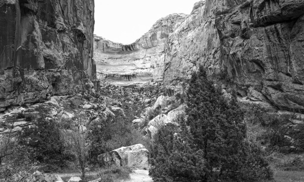 Interview with landscape photographer Daniel Cheek
