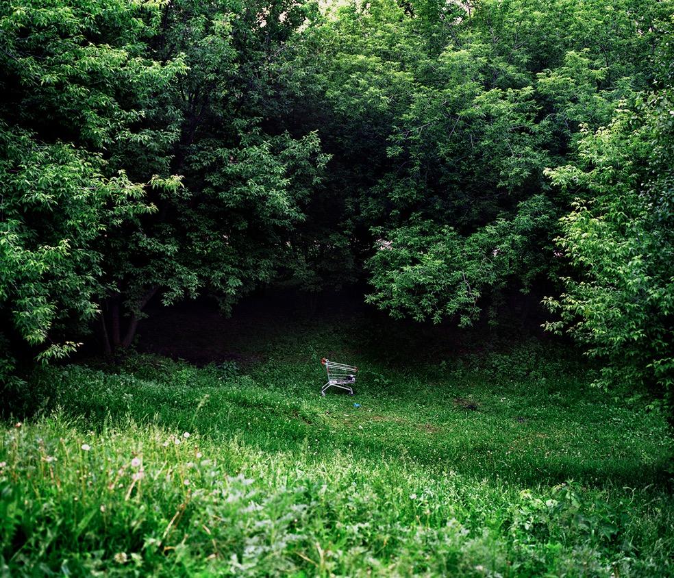 Noise in the © Park Julia Abzaltdinova