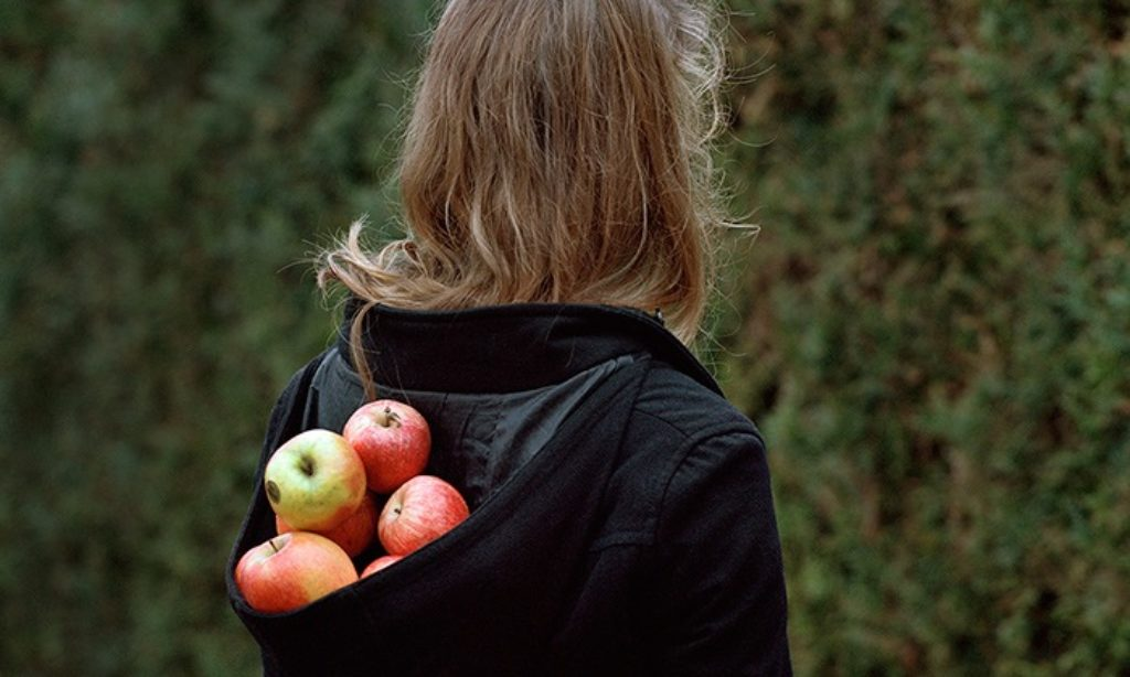 Alexandra Serrano: Nesting in the Wolf Tree
