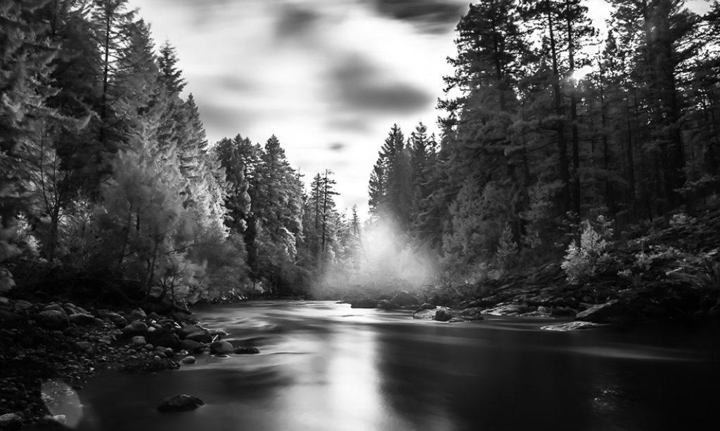 Randy Wachtin: Cascadia By Nature