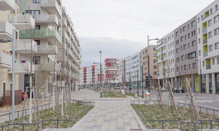Amadeus Waldner: First Steps of a City